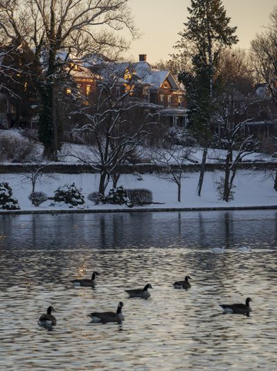 City-Park-Lake-Snow