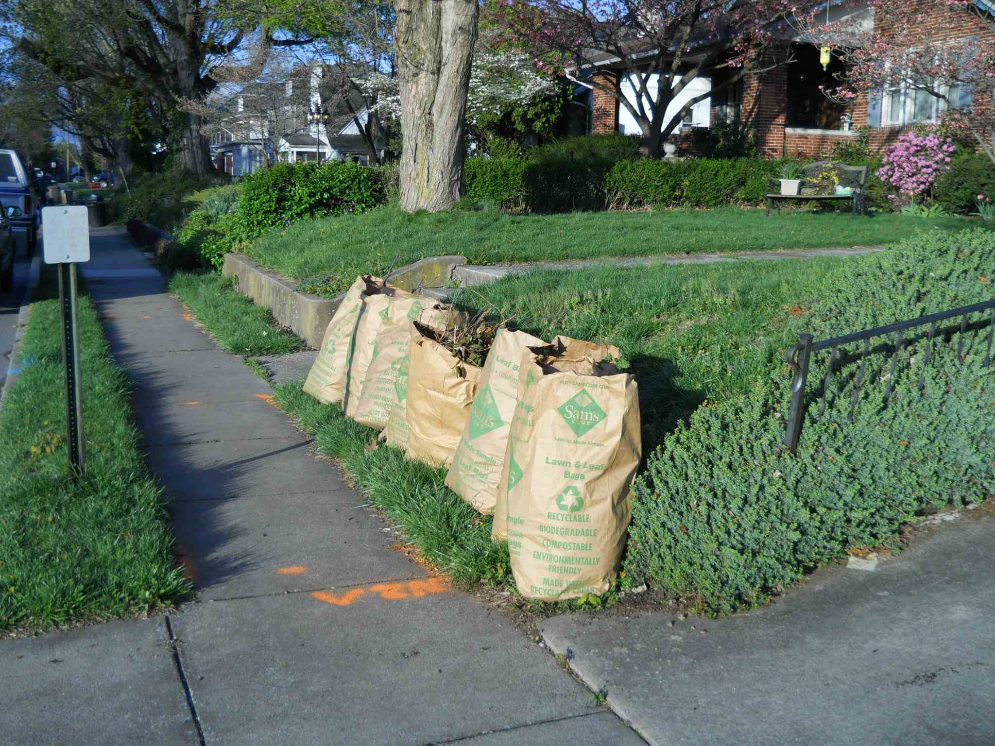 Yard waste photo